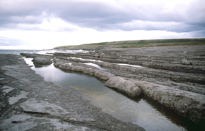 Coastline where the Dorset Paleoeskimos lived at Port au Choix National Historic Site of Canada (N.L.)