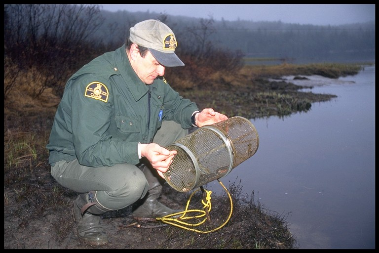 Warden collecting fish monitoring data.