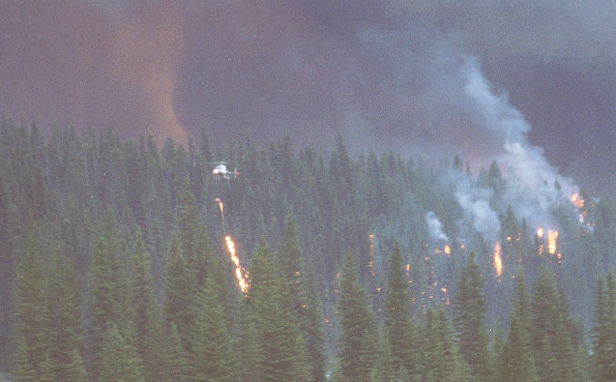 A helicopter flies along above  the forest, dropping flame using a helitorch. Grey smoke in the background