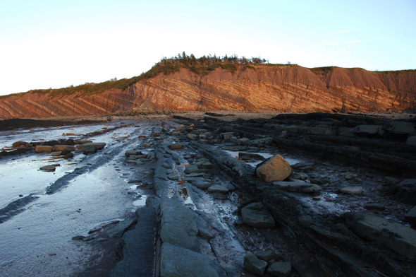 Joggins Fossil Cliffs.