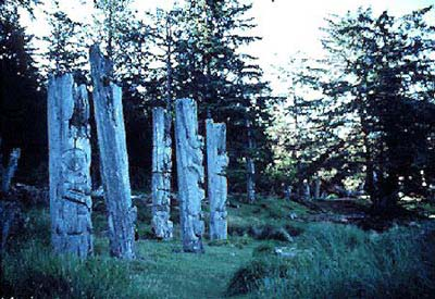 Picture memorial poles in the forest.
