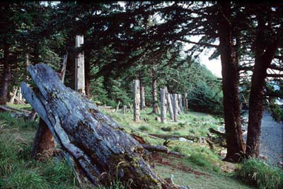 Picture of Haida memorial poles in the forest close to the sea.
