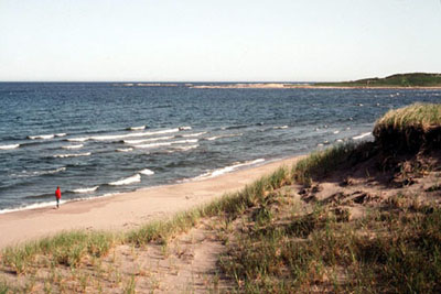 Picture of costal dunes a beach and the sea.